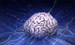Hybrid_IA_Brain_Web